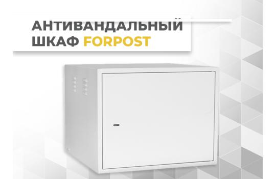 Антивандальный шкаф настенный серии Forpost